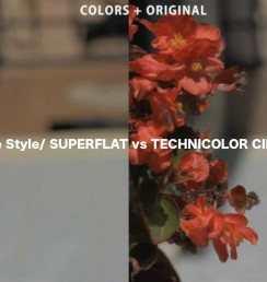 7D - Superflat vs Technicolor Cinestyle