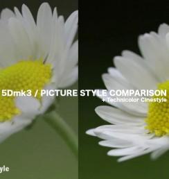 Canon 5Dmk3 REVIEW Part 1 – Picture Style comparison, Technicolor Cinestyle