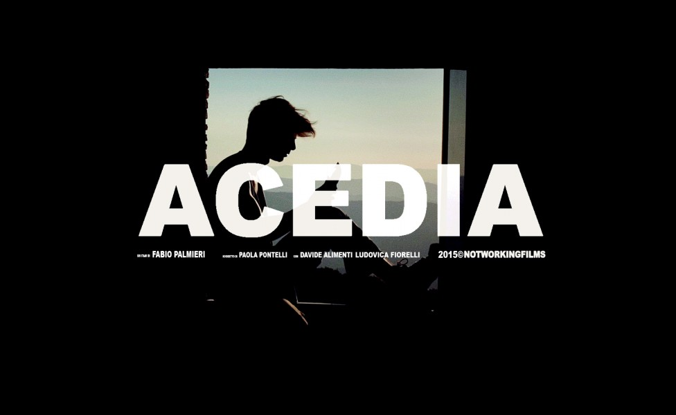 ACEDIA - Cover 1